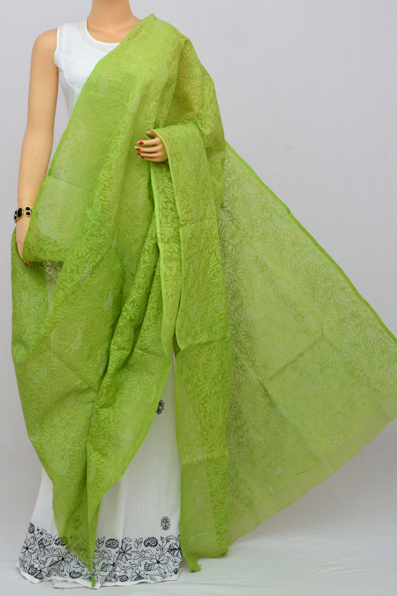 Olive Green Hand Embroidered Lucknowi Chikankari Dupatta (kota Cotton) Hs250264